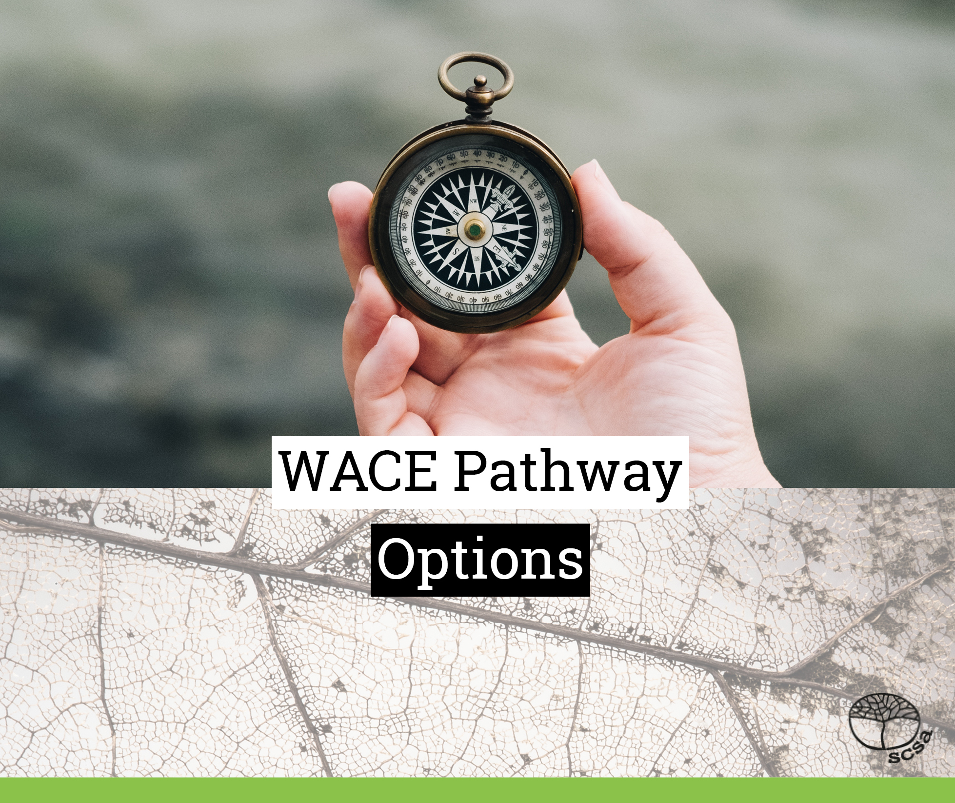 WACE pathway options